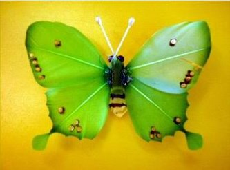 Kerajinan Kupu-kupu